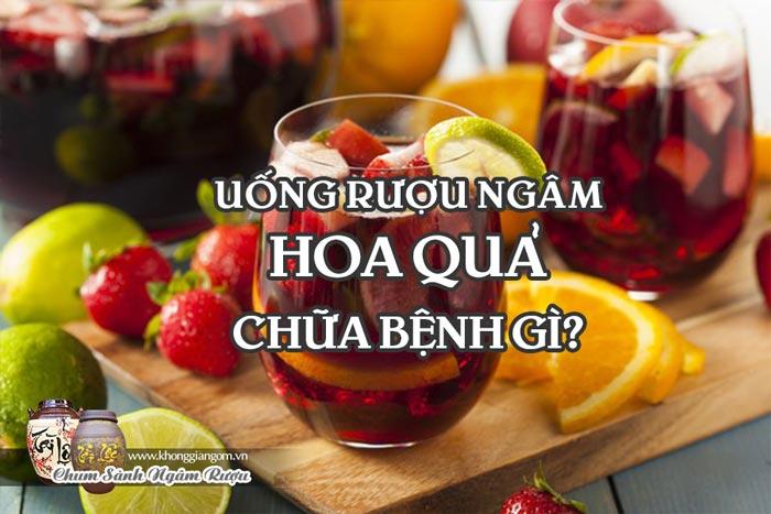 Tác dụng chữa bệnh của rượu ngâm hoa quả - Rượu ngâm trị bệnh