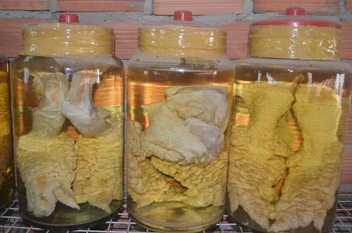 bình rượu ngâm gà đông tảo bằng thủy tinh