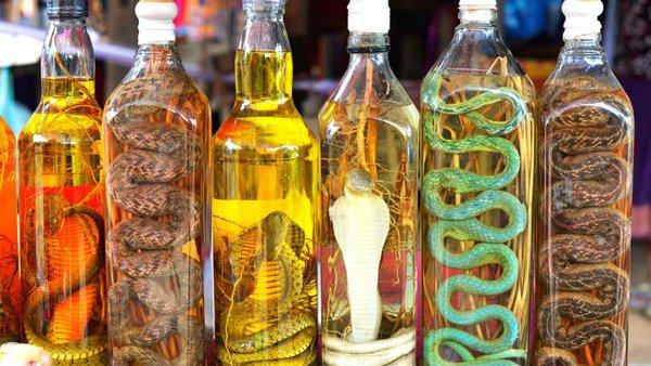 rượu rắn ngâm bao lâu thì uống được