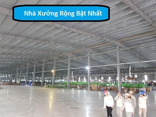 Nhà Máy sản Xuất ám Chén Quy Mô lớn quy trình sản xuất hiện đại giá thành rẻ